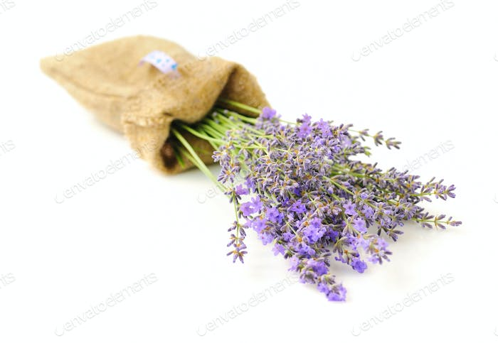 Lavender flowers (Lavandula) in a sack isolated on white backgro