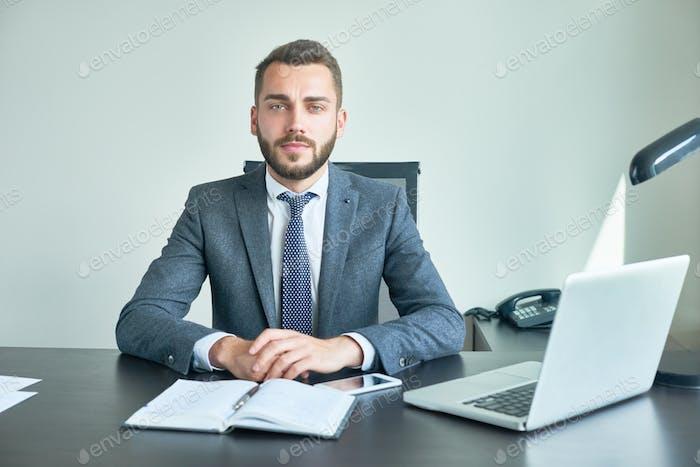 Bearded Entrepreneur Posing for Photography