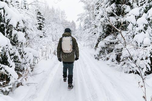 Человек с рюкзаком гуляет по заснеженным лесам. Прекрасное зимнее время. Вид сзади.