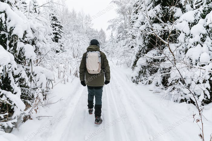 Man with backpack walking on snow covered forest. Beautiful winter time. Back view.