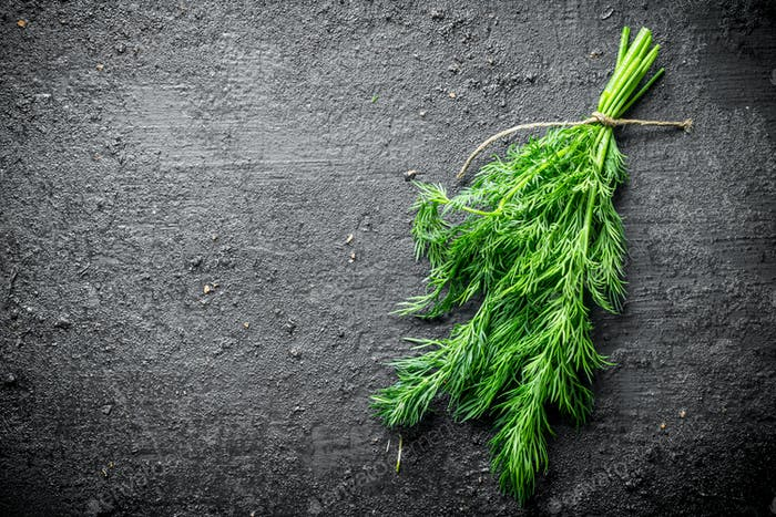 Fresh dill for the salad.
