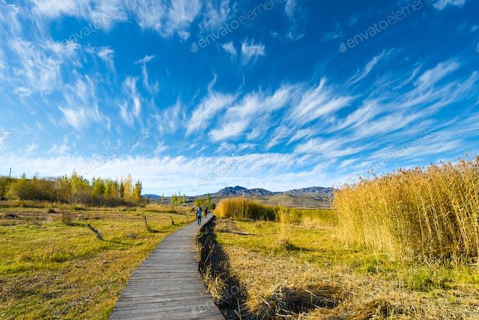 Catwalks and lake