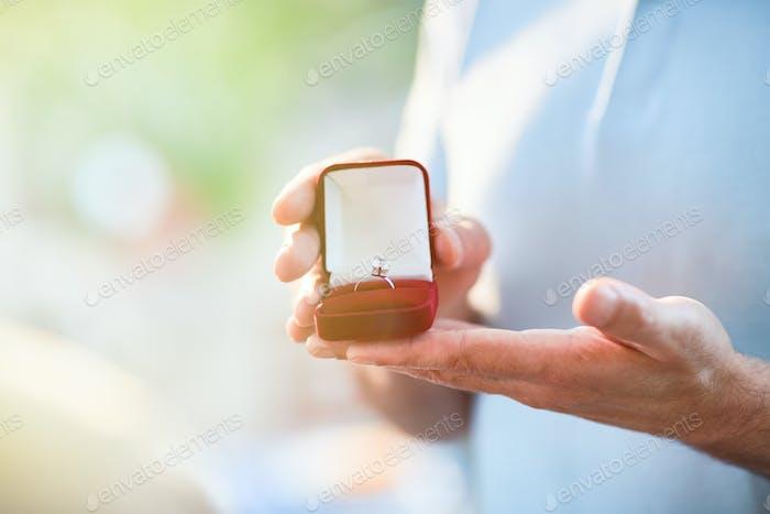 Ring in Samtbox