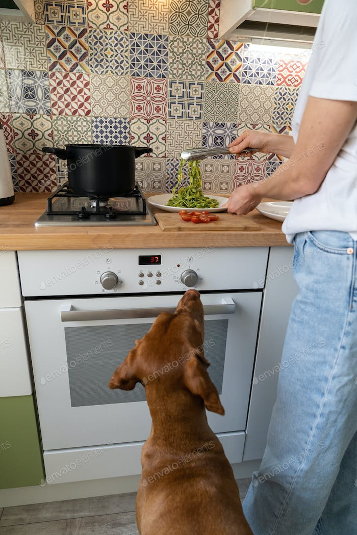 Woman puts the fettuccine pesto paste from saucepan on a plate, dog begging nearby