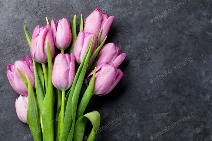 Fresh purple tulip flowers