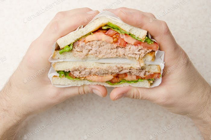 Wrapped Tuna sandwiches with lettuce tomatoes and onions cut in half in caucasian model's hand