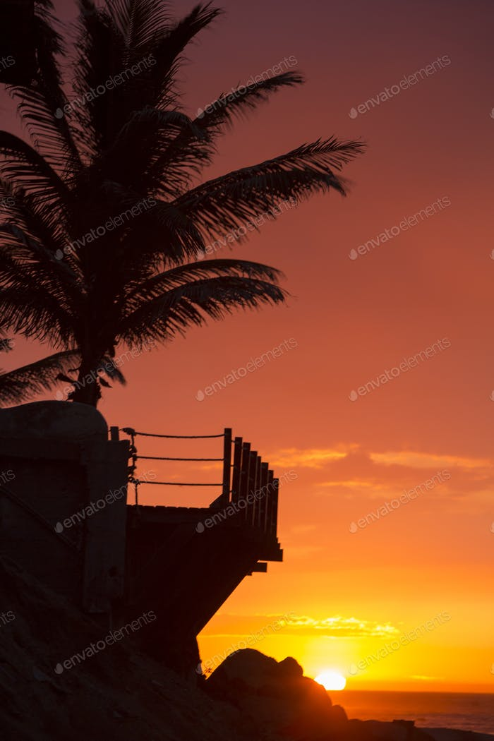 Palm trees and wild balcony in Mancora during a wonderful sunset
