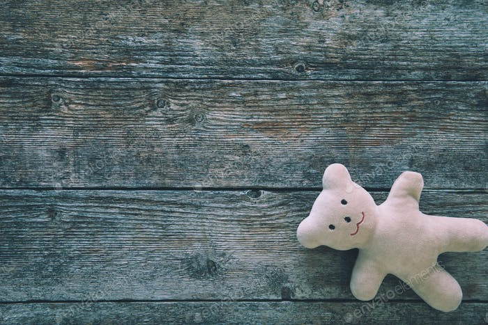 Teddy bear on a wooden background. Space for text