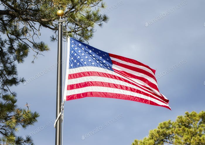 American flag blowing in the wind in a park.