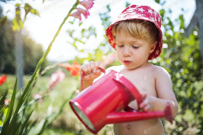 Small boy with can outdoors in garden in summer, watering flowers.
