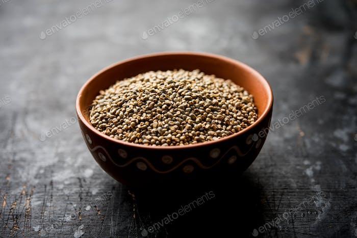 Bajra or pearl millet or sorghum grains