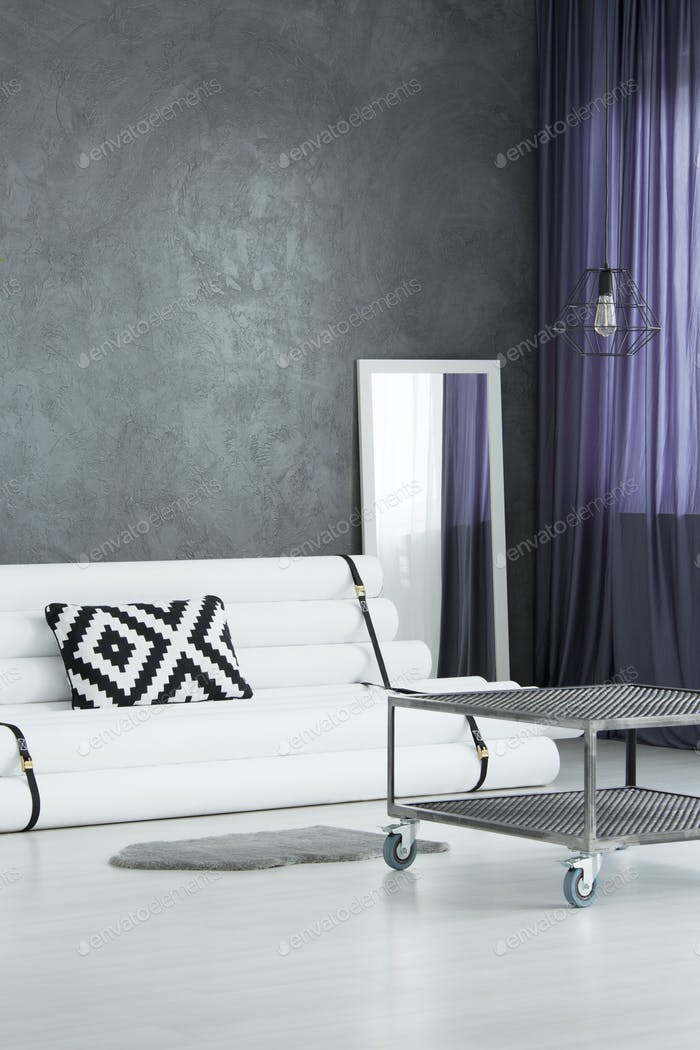 Gray rug and white sofa