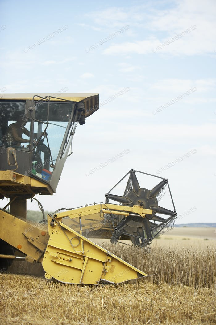 Thumbnail for Combine Harvester Working In Field