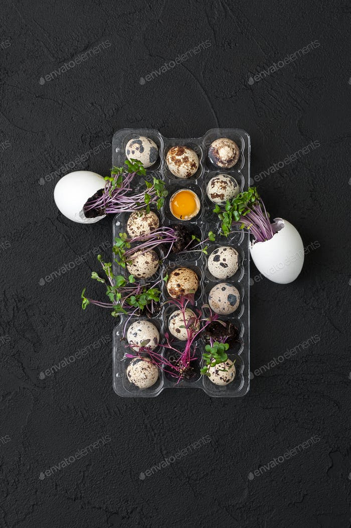 A pallet with fresh quail eggs and a watercress on a black table