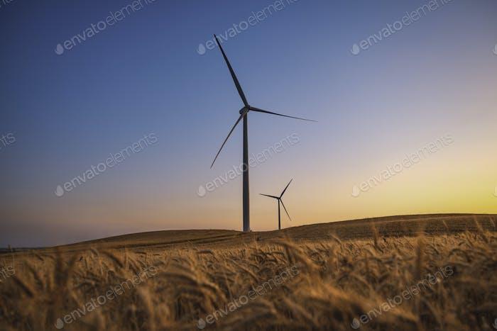 A wind turbine. Electricity wind generator