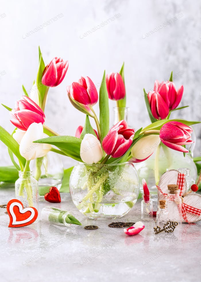 Pink and white tulips in glass vases
