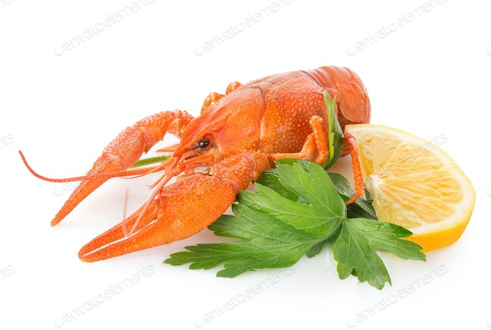 Crawfish and lemon