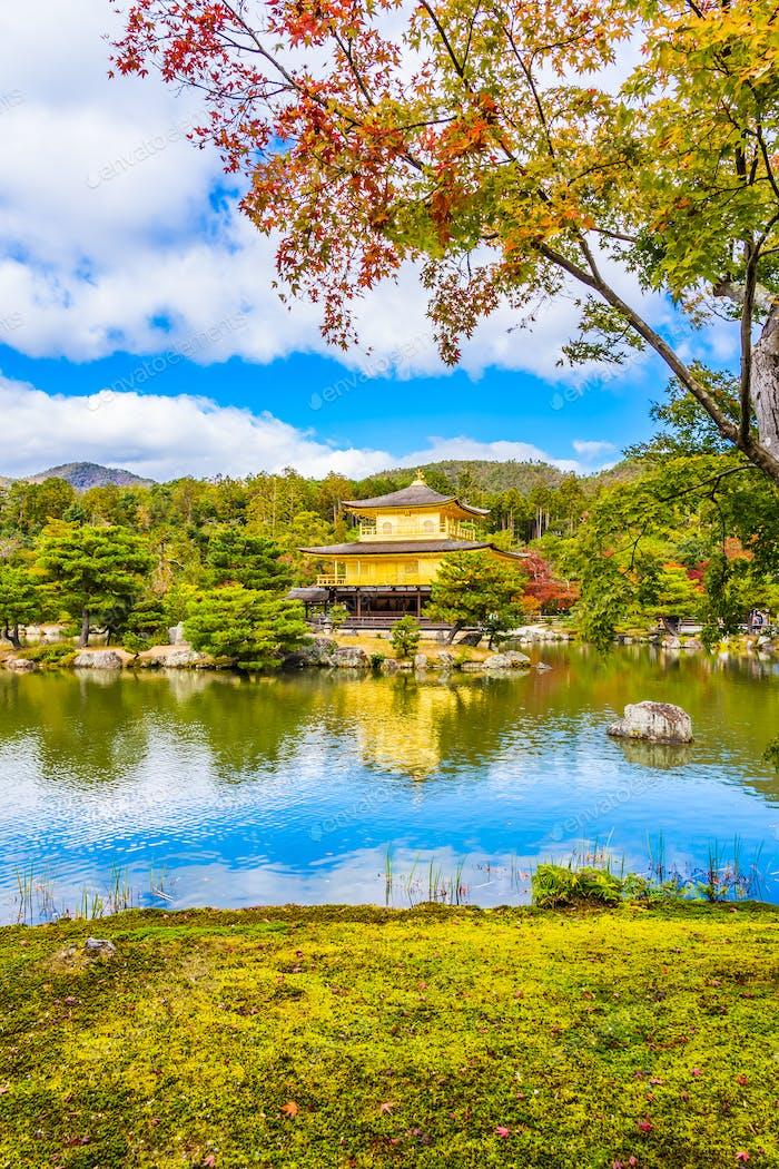 Schöner Kinkakuji Tempel mit goldenem Pavillon in Kyoto japan
