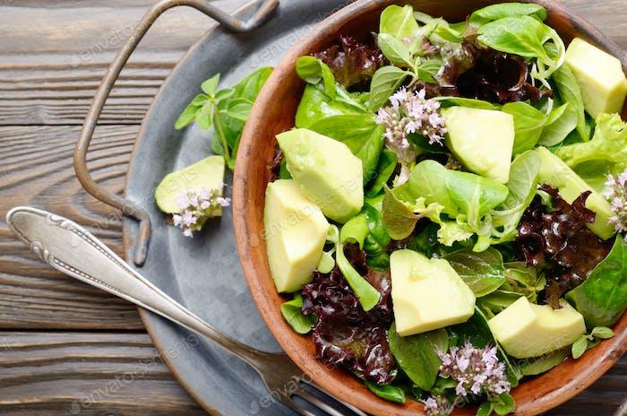 Draufsicht auf Tongericht mit Salat aus Avocado, grünem und violettem Salat