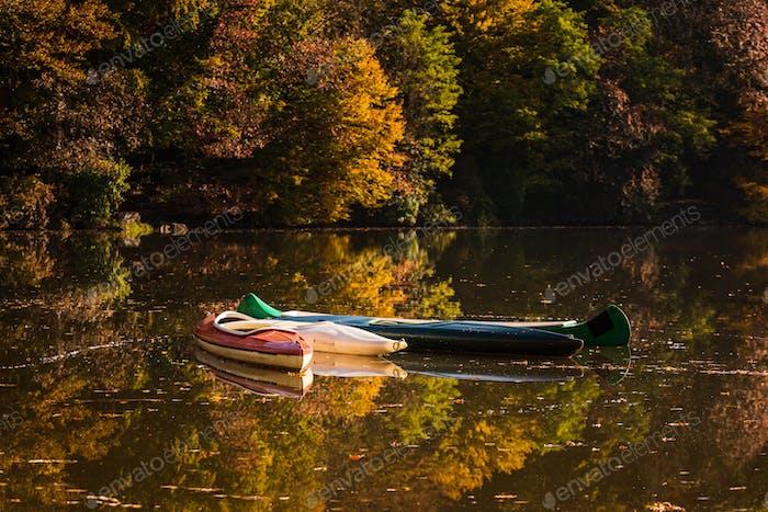 Kanufahrten auf einem nebligen See mit Herbstlaub und Baumreflexionen