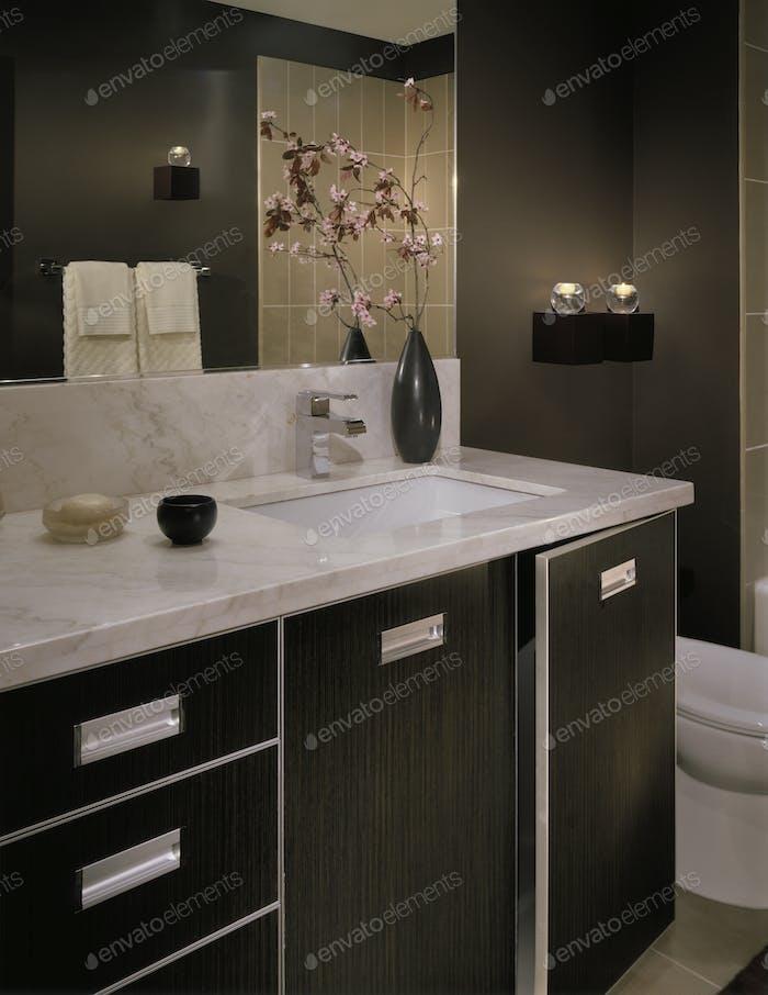 49202,Luxury Bathroom