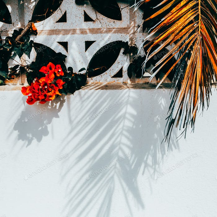 Tropical background. Red flowers and palm trees. Traveling Fashi