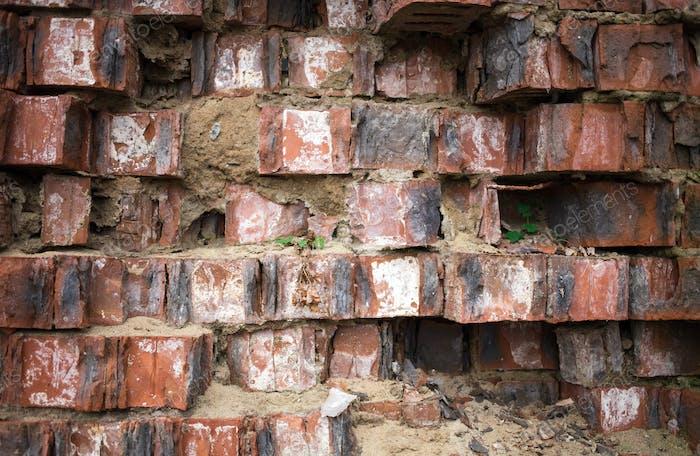 Closeup of grungy red brick wall.
