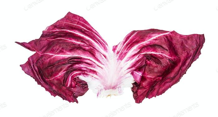 frisches Blatt von Radicchio (italienische Chicorée) isoliert