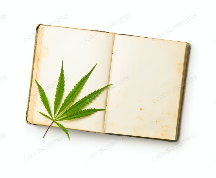 Marijuana cannabis leaves