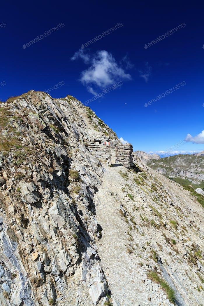 alpine pathway