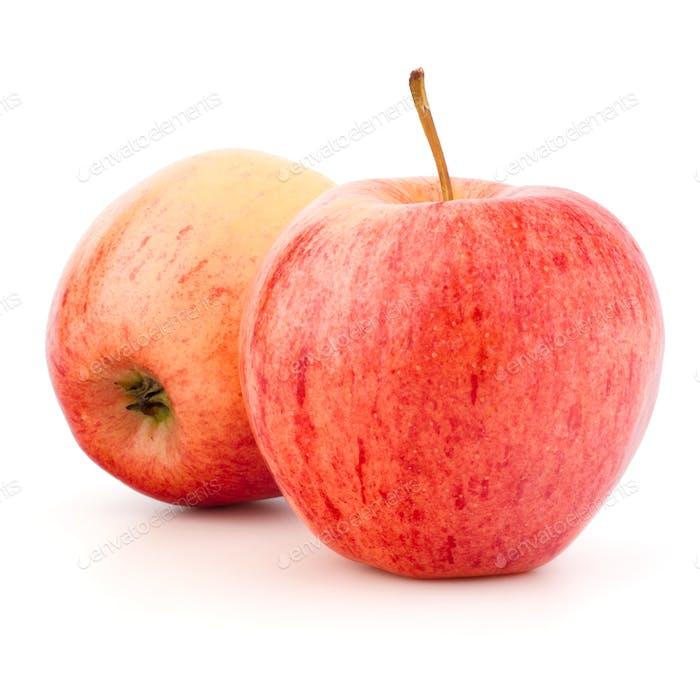 Roter Apfel isoliert auf weißem Hintergrund Ausschnitt