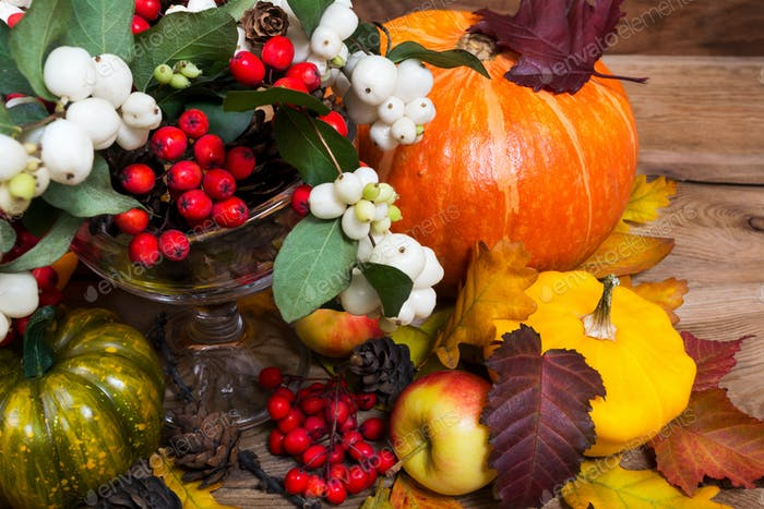 Thanksgiving decor with snowberry, rowan, pumpkin, fall leaves