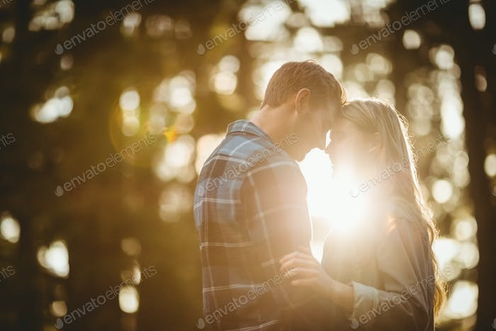 Happy couple embracing and about to kiss in the nature