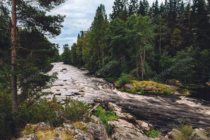 Mountain fast river stream of water in the rocks with green forest in Finland