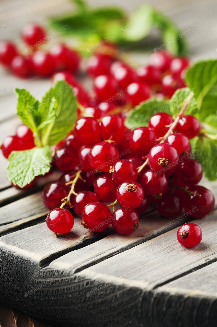 Red currant and mint on the wooden table