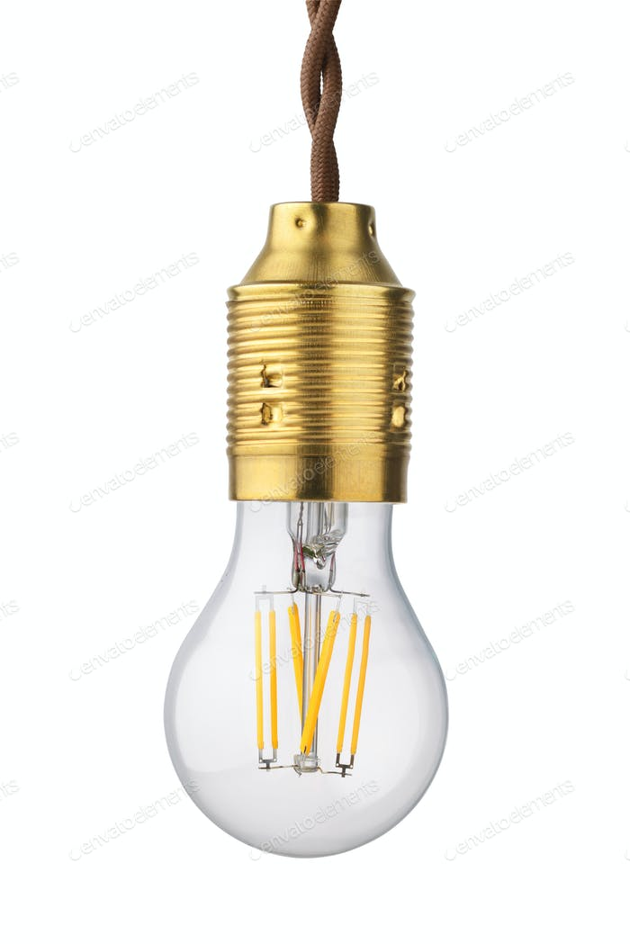 LED filament isolated