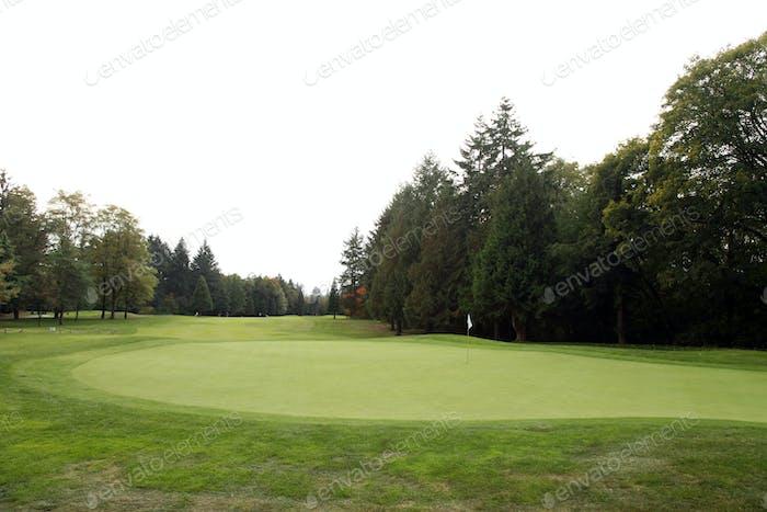 Golf Course - Luxury International Standard