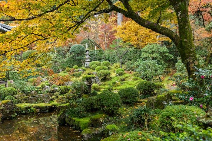 Templo japonés en otoño