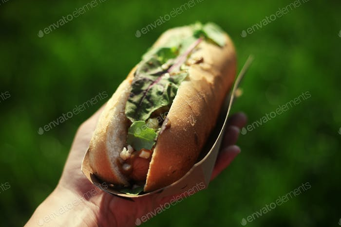 Close up of a hot dog in hand against green grass background. Shallow depth of field.