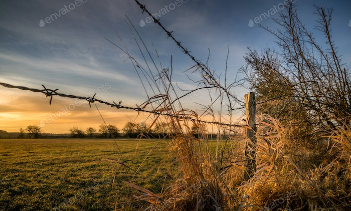 A Wooden Fence Post and Barbed Wire