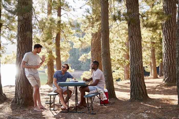 Three male friends hanging out talking by a lake