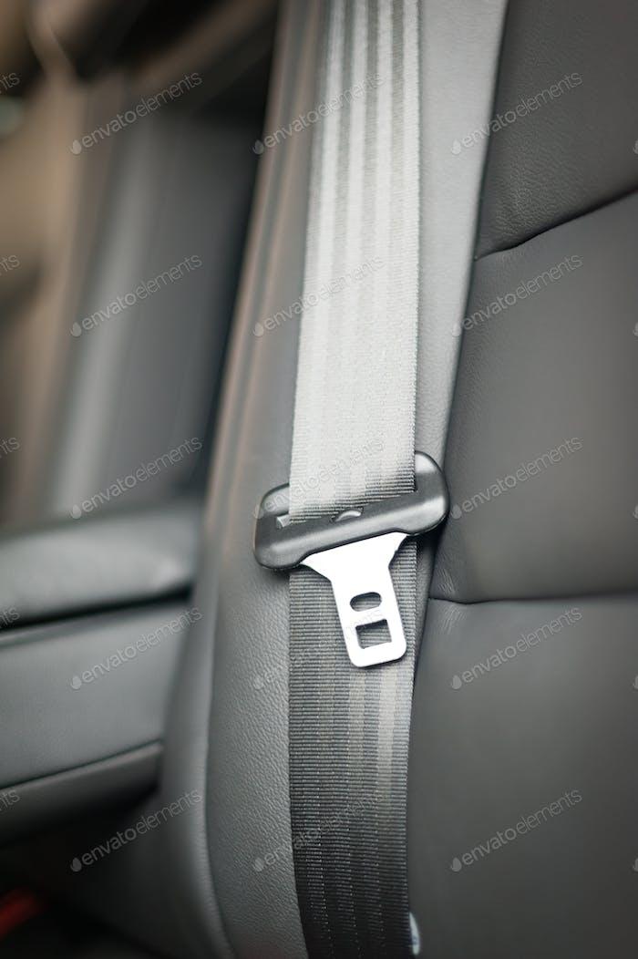 seat belt interior