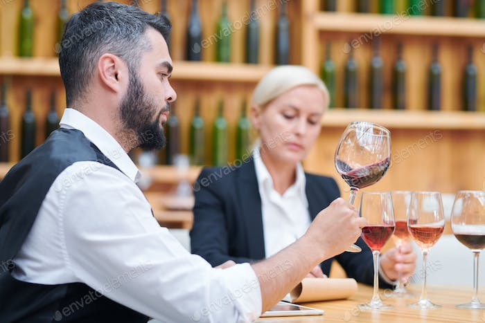Contemporary cavist checking quality and characteristics of new sorts of wine