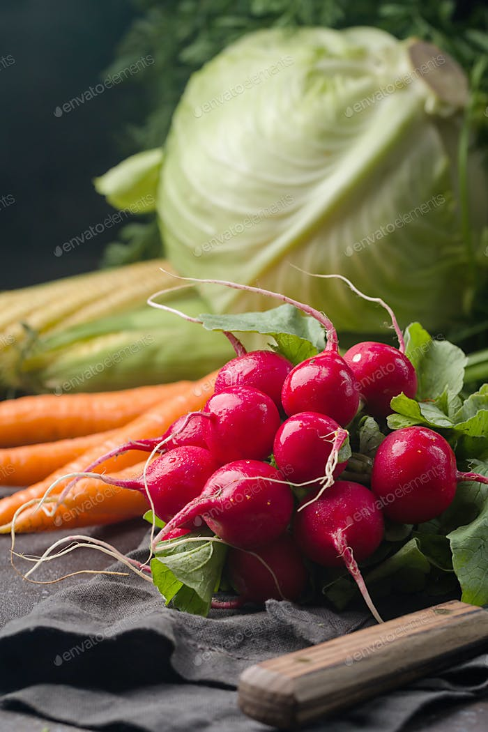 Still life of different vegetables
