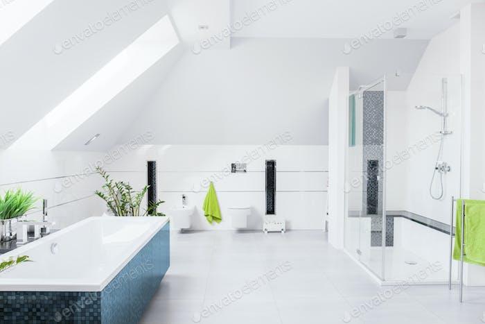 Exclusive bright bathroom