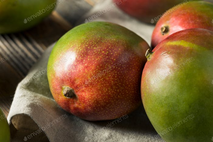 Raw Red Green Organic Mango Fruit