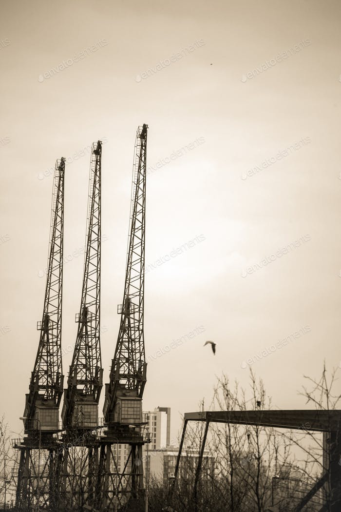 Cranes on the building site