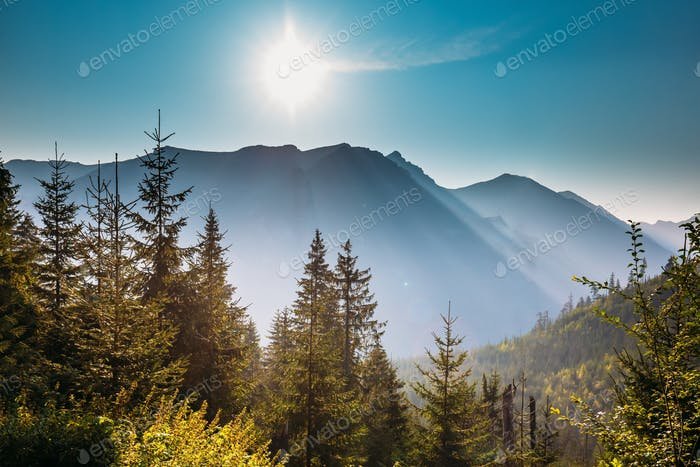 Tatra National Park, Poland. Sunrise Above Summer Mountain And M