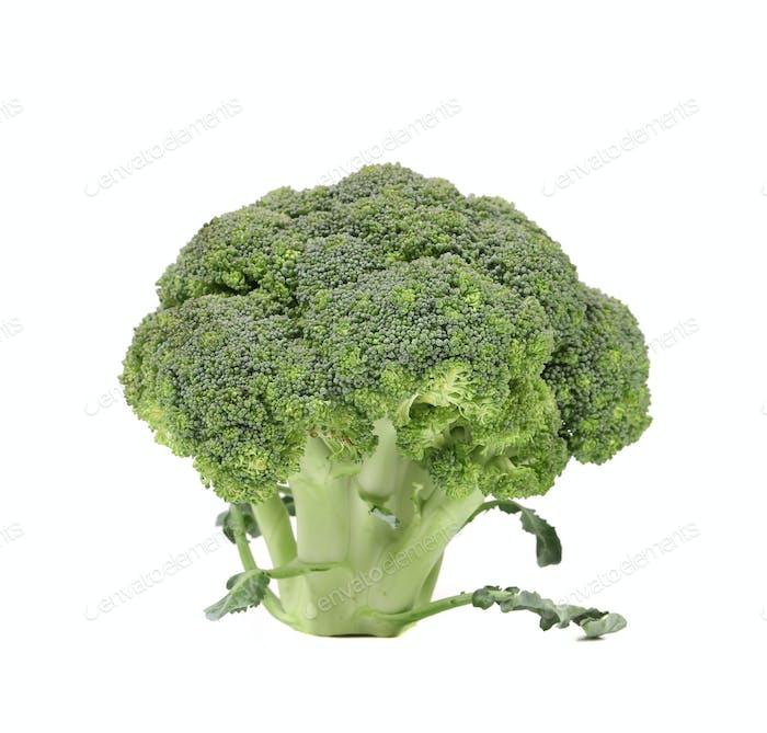 Fresh broccoli close up.