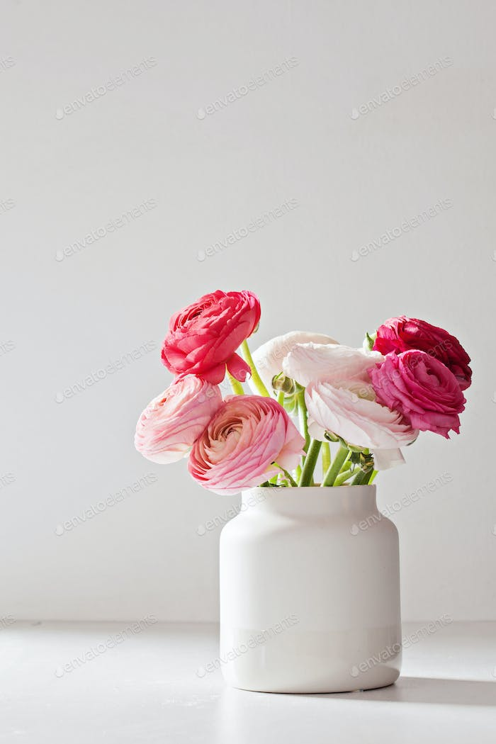 Bouquet of pink and white ranunculus flowers. Bithday, mothers day, saint valentine